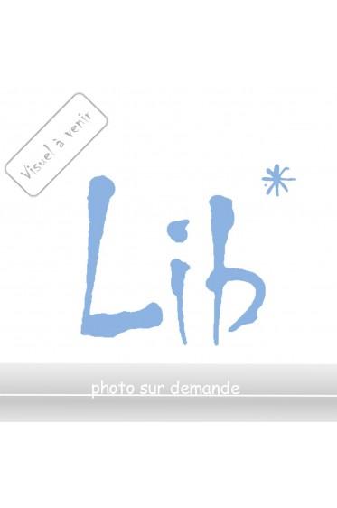 Le zèbre - A. Jardin - Ed. France Loisirs, 1989 - Relié -