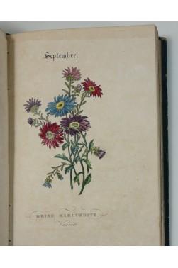 Le langage des fleurs par Charlotte De La Tour. 14 superbes planches aquarellées, 1839