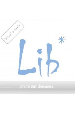 La Fille du ciel - Y. Lacamp - Ed. France Loisirs, 1989 - Relié -