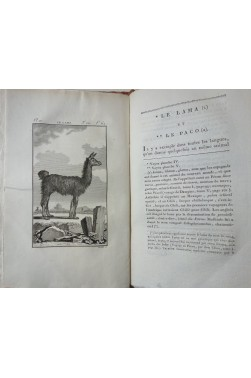 BUFFON. Histoire Naturelle des QUADRUPEDES 10/10 - Complet, 177 Planches, Dufart An VIII