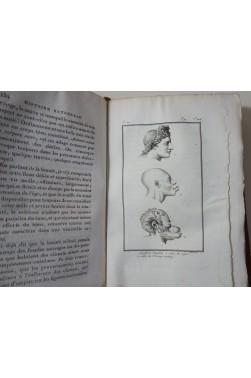 VIREY. Histoire Naturelle du Genre Humain - 11 Planches, Dufart - An IX, 2/2