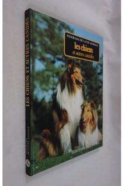 Les chiens et autres canidés. Panorama de la vie animale