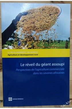 Reveiller Le Geant Dormant Africain / Waking the Sleeping African Giant: Pers...