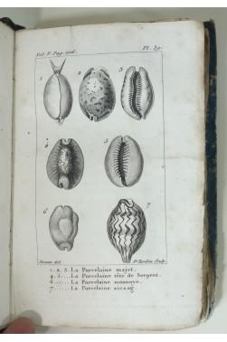 Histoire naturelle des coquilles. Lot de 4 tomes avec planches